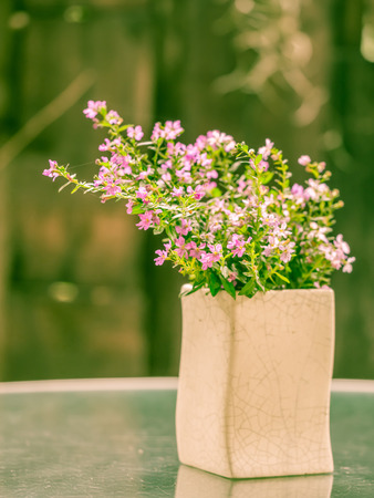 Vintage tone. Flowers in the pottery pot on table. Stock Photo