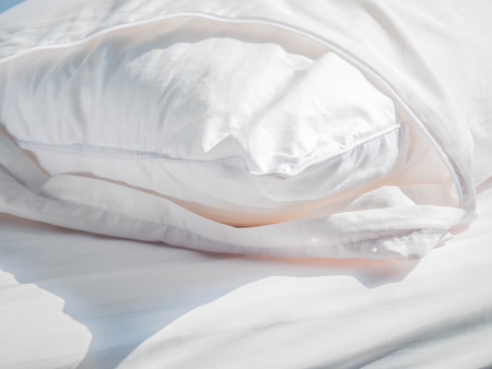 Using Zippered Dust Mites Pillow Covers Is The Easiest And Fastest Enchanting Dust Mite Pillow Cover
