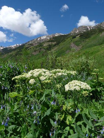 conundrum: Colorado Conundrum Trail