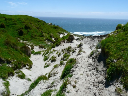 inlet bay: Sandy walk to Kaihoka Beach, New Zealand