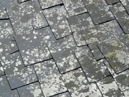 Old slate roof tiles photo