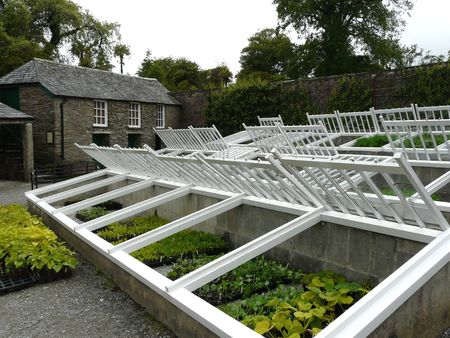 Traditional cold frames for wintering plants  Stock Photo