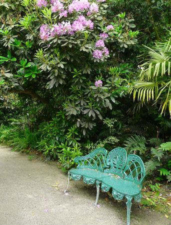 Park bench in the Lost Gardens of Heligan in Cornwall, England