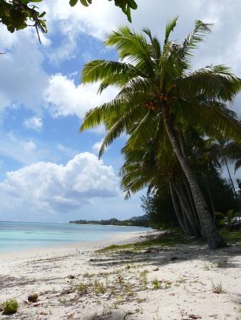 rarotonga: Idilliaca spiaggia tropicale alla laguna di Muri su Rarotonga, Isole Cook