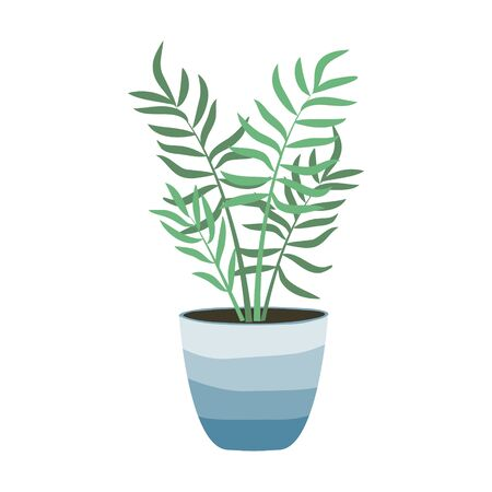 House plants isolated on white background. Bamboo palm. Potted plants. Stock vector illustration in flat style. Home decoration. Growing plants.