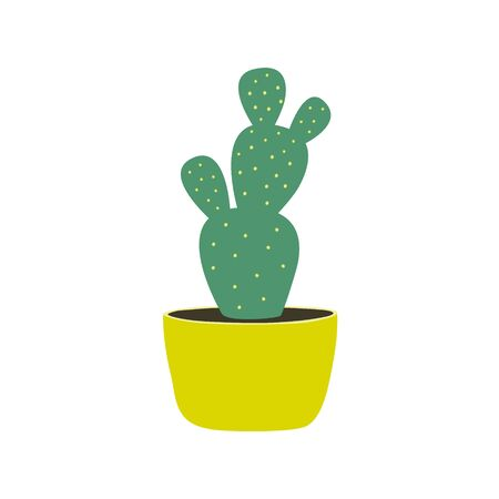House plants isolated on white background. Cactus. Potted plants. Stock vector illustration in flat style. Home decoration. Growing plants.