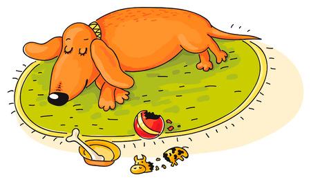 sleeps: Dachshund has played and sleeps Illustration
