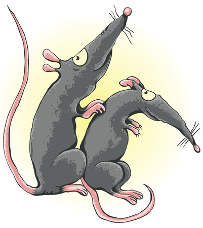 rat cartoon: Arañazos rata otra rata