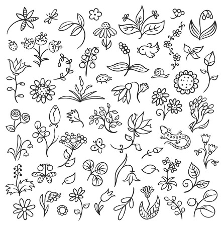 cartoon snail: Set of floral design elements in a sketchy doodle style, black and white