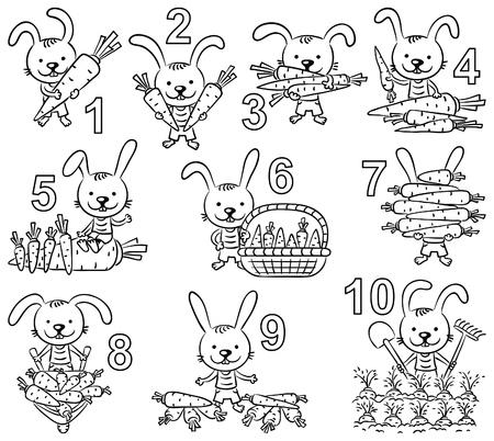 zanahoria caricatura: Los números en imágenes de la historieta fijados, conejo y sus zanahorias, esquema blanco y negro Vectores