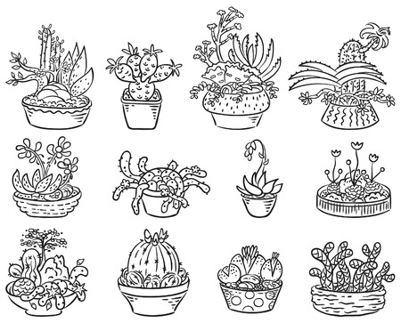 doodle art clipart: Set of succulent compositions in containers, black and white outline