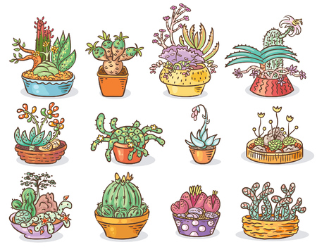 windowsill: Set of succulent compositions in containers, colorful drawing