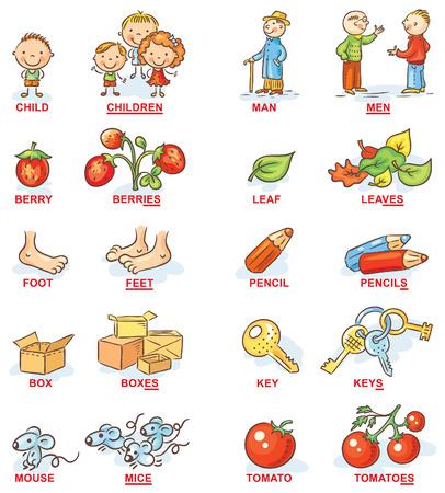 Meervoud van zelfstandige naamwoorden in kleurrijke cartoon foto's, kan worden gebruikt als hulp bij het onderwijs voor het leren van vreemde talen