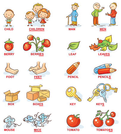 Plural of nouns in colorful cartoon pictures, can be used as a teaching aid for foreign language learning Illustration