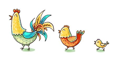 Colorful cartoon chicken family, vector illustration