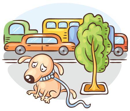 Un perro se pierde en una calle concurrida de la ciudad.