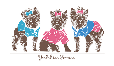 Dogs, three Yorkshire Terrier in the suits, vector logo Illustration