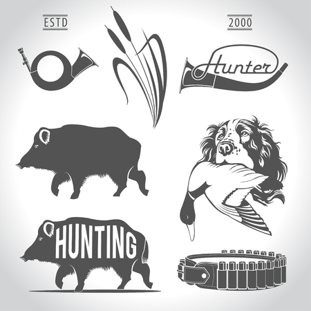 duck hunting: Hunting, design elements. Boar, wild duck, bandolier, hunting dog with duck in his mouth, hunting horn, reeds.