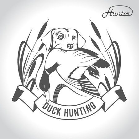 duck hunting: Hunting logo hunting dog with a wild duck in his teeth and design elements. The outfit of the hunter.