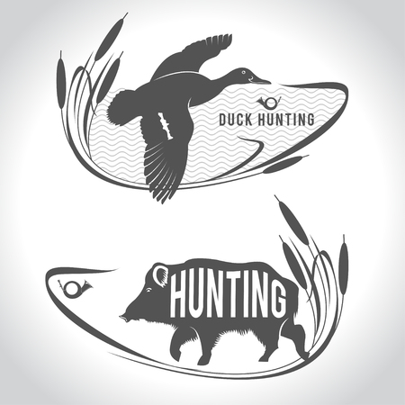 Hunting. Hunting. Wild boar and wild duck over a lake.