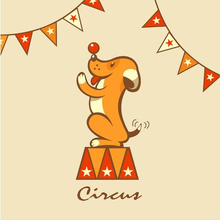 Circus hond. Het circus dieren. De hond voert trucs.