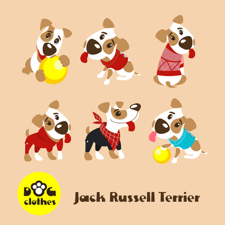Six funny dogs Jack Russell Terrier in clothes. Clothing for dogs. Vector illustration.