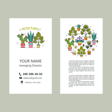 Potted plants. Vector illustration. Business cards, flyer. Isolated on white background.