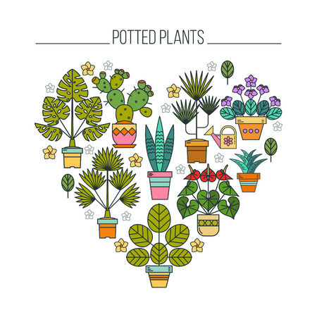 Potted plants. Flowers in pots. Arrangement of potted flowers in the shape of a heart. Isolated on white background. Çizim