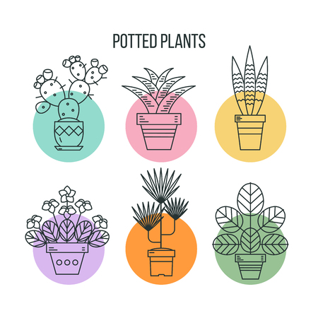 Potted plants. Linear isolated icons on white background. Illustration