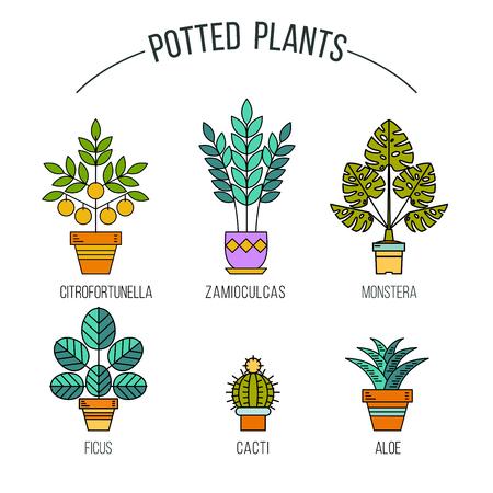 鉢植えの植物。線形アイコンのセットです。フラワー ショップ。