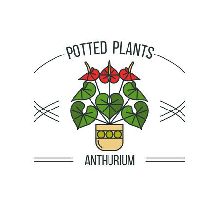 鉢植えの植物。ベクトル イラスト、ロゴ。白い背景上に分離。アンスリウム。  イラスト・ベクター素材