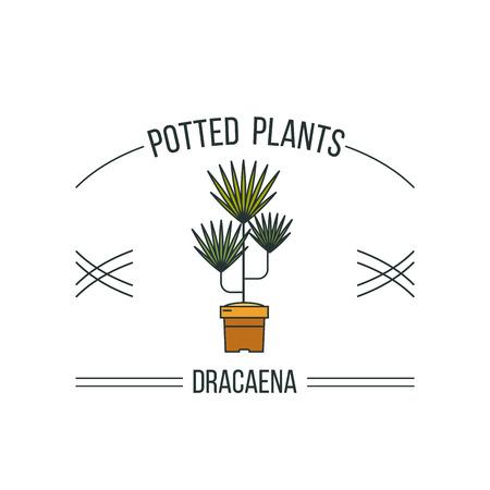 鉢植えの植物。フラワー ショップの広告。白い背景上に分離。ベクトルの図。  イラスト・ベクター素材