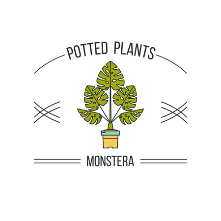 Potted plants. Advertising a flower shop. Vector illustration linear. Isolated on white background.