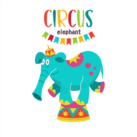 Circus artist. Circus animals. A trained circus elephant. The elephant stands on a pedestal. Vector illustration. Isolated on a white background.