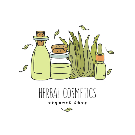 Herbal cosmetics, natural oil. Vector hand drawn illustration for natural eco cosmetics store. Natural aloe products.