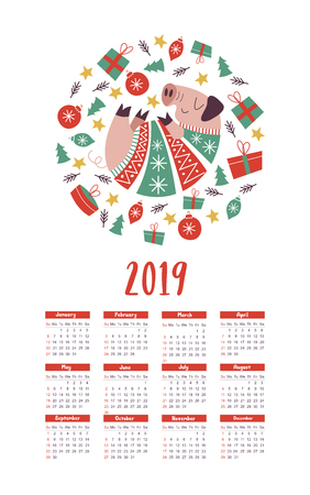 Vector calendar template 2019. Cute pig in a knitted sweater, Christmas decorations and gifts. The pig is the symbol of 2019.