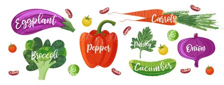 Set of hand drawn vegetables. Vector illustration on white background. Delicious colorful vegetables with hand drawn unique texture. Imagens - 129894887