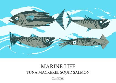 Seafood. Fish. Colorful vector illustration, a collection of images of different fish with a unique hand drawn vector texture. Poster of tuna, mackerel, salmon, squid.