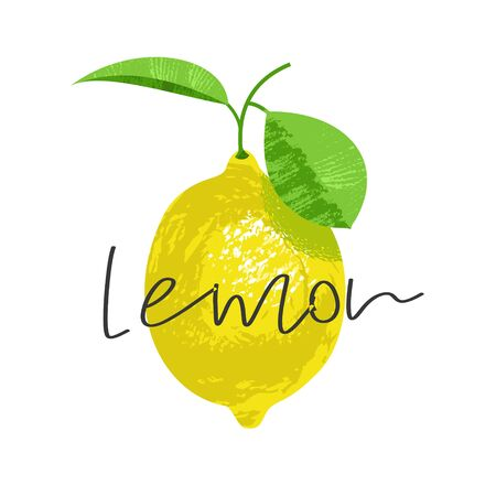 Lemon on a twig with a leaf. Vector illustration with inscription. On white background. Illustration with unique hand drawn texture.