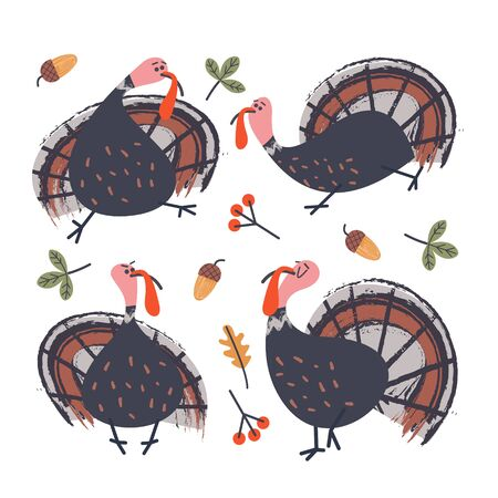 Collection of vector elements for thanksgiving.  Cheerful turkeys, autumn leaves, orange pumpkins, berries and acorns. Vector illustration on white background.