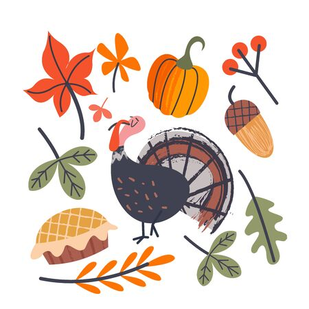 Collection of vector elements for thanksgiving.  Cheerful Turkey, autumn leaves, orange pumpkins, berries and acorns, holiday cake.  Vector illustration on white background.