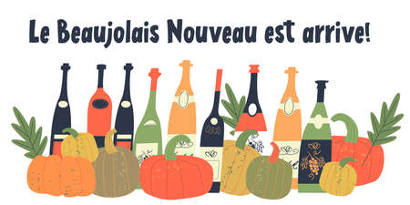 Beaujolais Nouveau has arrived. the inscription in French. Vector illustration with bottles of young wine, bright orange pumpkins and autumn leaves. Illustration for the festival of young wine in France on the third Thursday in November.