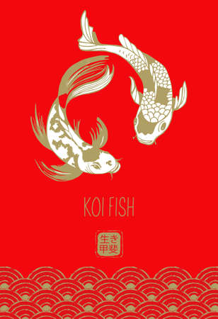 Japanese koi fish. Vector illustration on a red background. Hieroglyphs mean ikigai, meaning of life.