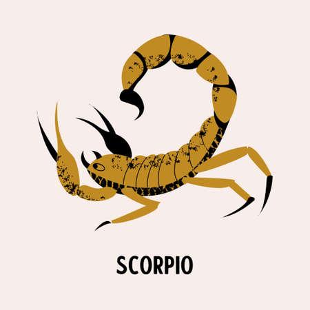 Scorpio. Constellation of Scorpio. Vector illustration on a light background. Çizim
