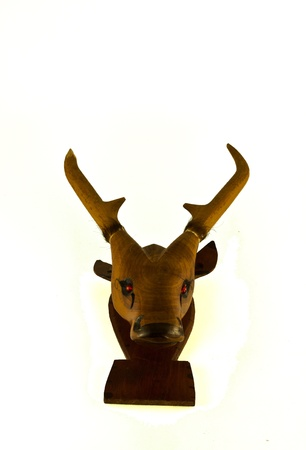 Deer head isolated of thailand photo