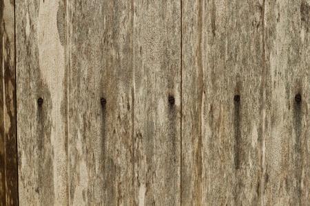 la texture di legno con modelli naturali