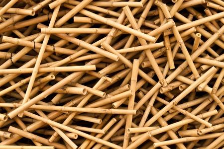 the bamboo walls Stock Photo - 12110056