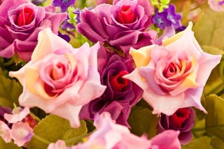 beautiful spring flowers Stock Photo - 13135161