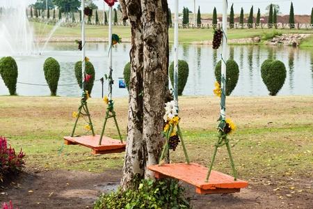 swing hanging in garden Stock Photo - 13318994