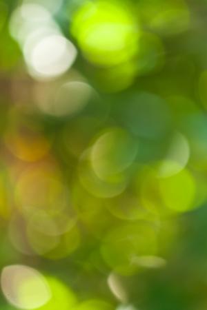 verde bokeh astratto
